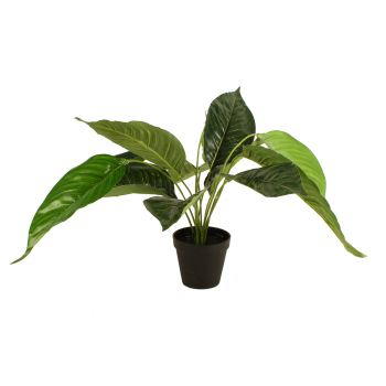 Artificial Potted Peace Lily 55cm