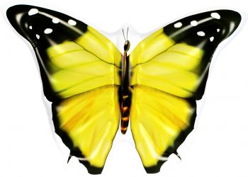 Airtime Inflatable Jumbo Butterfly Yellow 133X183X24CM