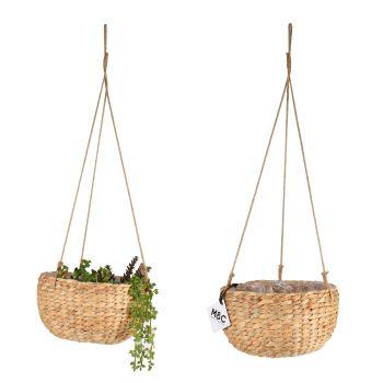 Hanging Basket Water Hyacinth 23x12cm